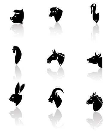 hen  farm: Farm animals and birds icon set. Vector