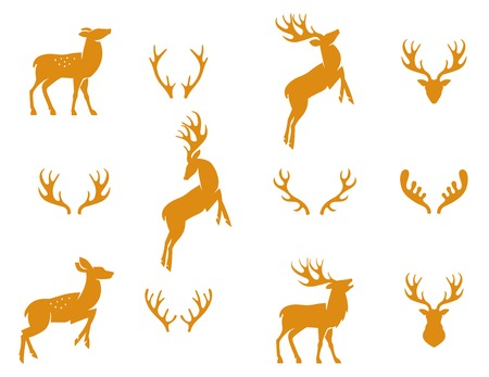 deer: Vector illustration of collection of deers silhouette