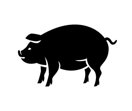 young pig: Silhouette of pig isolated on white background