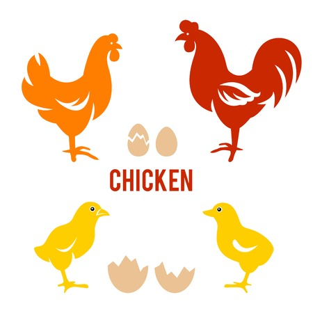 Vector Illustration of Rooster, Hen, Chick and Eggs Vector