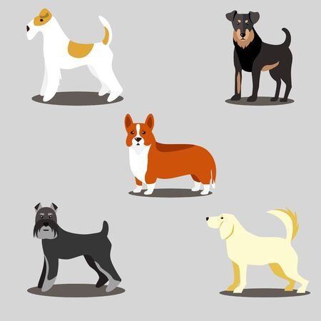 vector icons dogs set isolated on a gray background