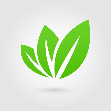 leaf water: Eco icon green leaf vector illustration isolated Illustration