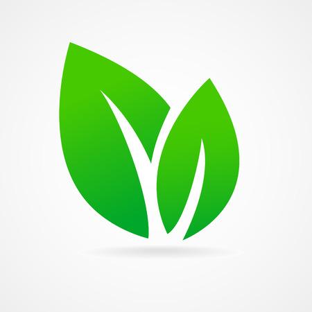 에코 아이콘 녹색 잎 벡터 일러스트 레이 션에 고립에게