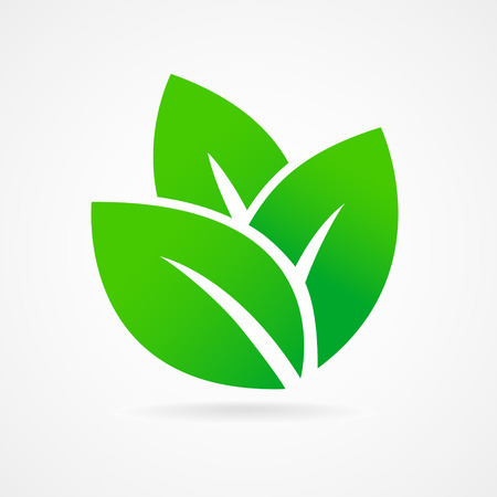 Eco icon green leaf vector illustration isolated Иллюстрация