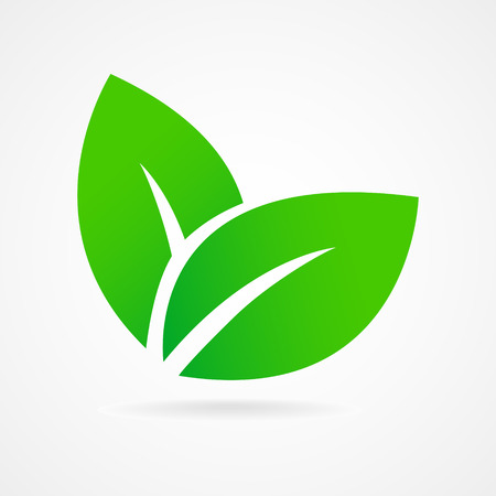 Green leaf ecology emblem isolated vector illustration