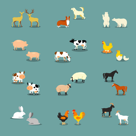 rooster: Farm animals set in flat vector style