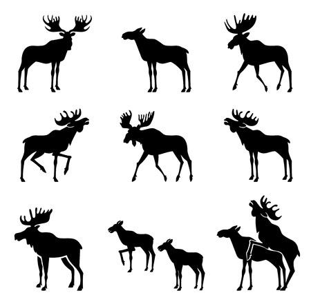Set di Moose Sagome. Immagini vettoriali Archivio Fotografico - 44827331