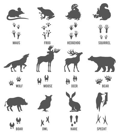 animales del bosque: Conjunto de animales y aves senderos con Name.Vector Conjunto de Black Forest Animales y Siluetas Aves