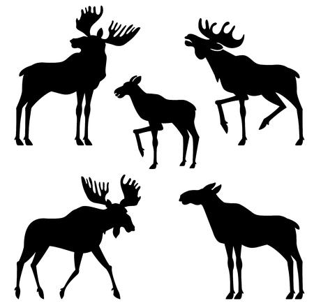 alaska: moose vector silhouette