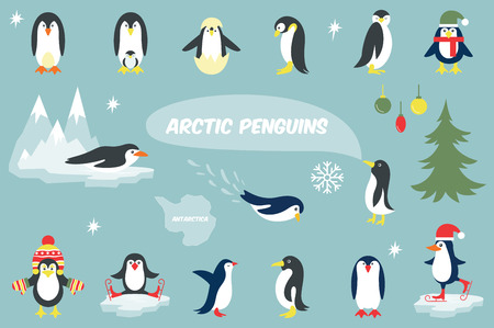 baby swim: Set of cute Christmas character - penguin. Vector illustration