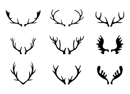 illustration with set of antlers and horns isolated on white background.