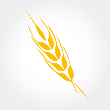 Wheat ears or rice icon. Crop, barley or rye symbol isolated on white background. Design element for beer label or bread packaging. Vector illustration. Illustration