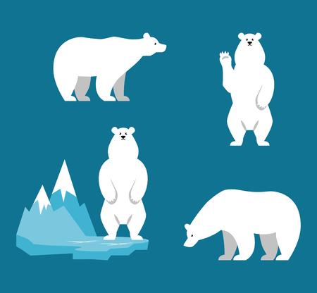 osos navideños: colección de los osos polares. personaje de dibujos animados divertido. Conjunto de animales polares. carácter estilo plano. Ilustración del vector.