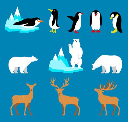 Vector set Arctic and Antarctic animals. Penguin, polar bear, reindeer. Set of polar animals. Flat style character. Funny cartoon character. Vector illustration.