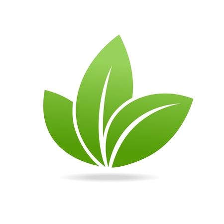 simple purity flowers: Eco icon with green leaf. Isolated on white background. Illustration