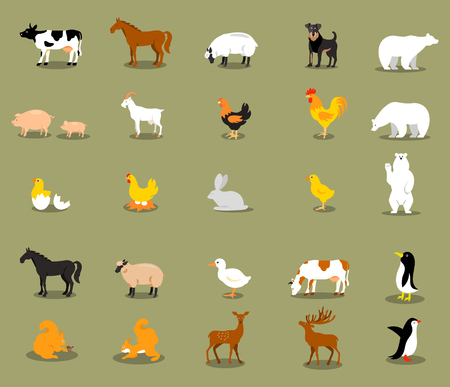 horse cock: Farm animals set in flat style with a chicken, cock, pig, sheep, beef, dairy, cow, horse, deer, bear, squirrel.