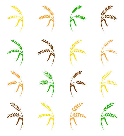 grain: Wheat ear symbols for icon design. Agriculture grain, organic plant, bread food, natural harvest, illustration. Illustration