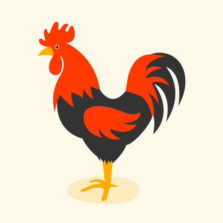 rooster at dawn: Cute cartoon rooster illustration. Cartoon rooster isolated on background. Rooster, cock farm bird. cock farm animal. Cute rooster illustration. Rooster farm animal .