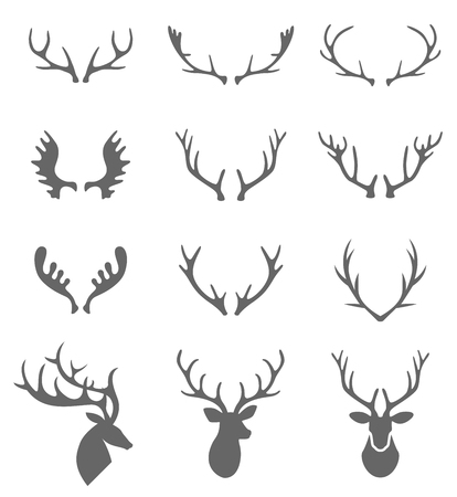Hand Drawn Deer Antlers . deer antlers isolated on white. Set of different antlers large, branched and acute.