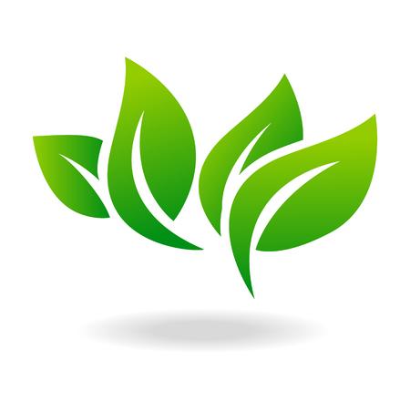 Icona a forma di foglia e emblema foglia verde. Ecologia foglia verde foglia ambiente organico, foglia di albero.