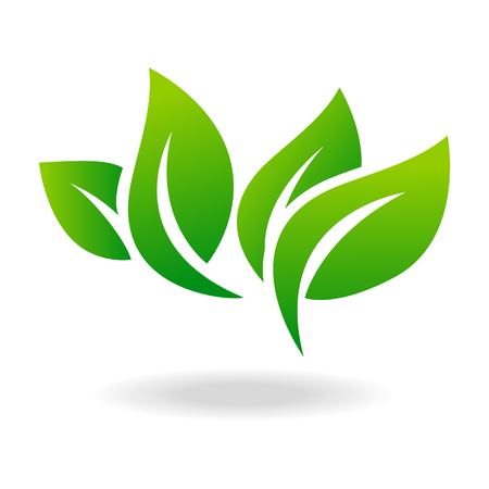 green environment: Leaf shape icon and green leaf emblem. Ecology green leaf organic environment, tree leaf .