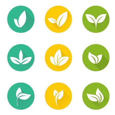 열대 세트 나뭇잎. 컬렉션 녹색 나무 잎. 자연 녹색 잎을 설정합니다. 잎은 요소 꽃 컬러 정원 예술을 설정합니다. 열대 컬렉션 나뭇잎. 자연 녹색 열 대