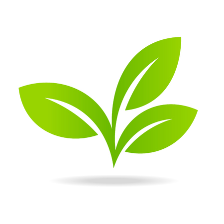 Icon of green leaf ecology nature element