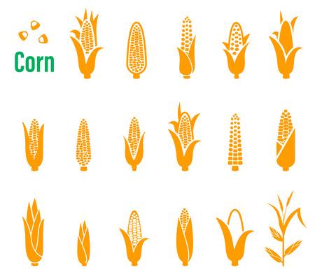 mazorca de maiz: Conjunto de iconos con el maíz en un fondo blanco.