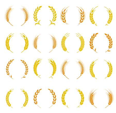 Wheat ear symbols for design. Agriculture grain, organic plant, bread food. Design elements for bread packaging or beer label. Set of silhouette circular laurel foliate and wheat wreaths.