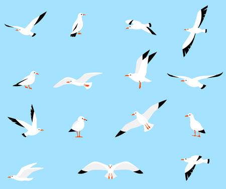흰색 배경에 고립 된 플랫 스타일 갈매기의 집합입니다. 바다 갈매기, 아름다운 새입니다. 만화 스타일에 귀여운 새.