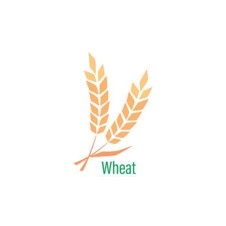sjabloon met tarwe. Volkoren, natuurlijke, organische achtergrond voor bakkerij-pakket, broodproducten.