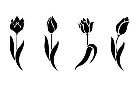 Vector conjunto de hermosas siluetas flores tulipanes. Ilustración sobre fondo blanco.
