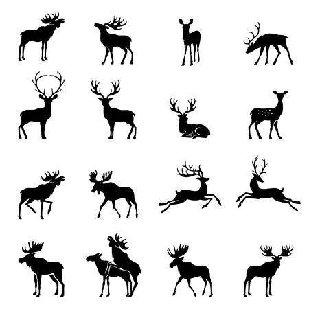 Deer collection - vector silhouette.