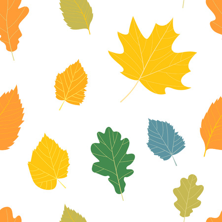 autumn garden: Seamless pattern with colorful autumn leaves.