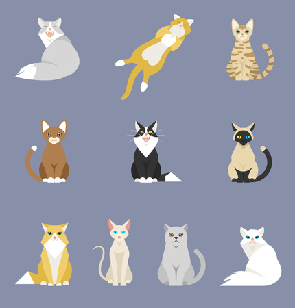 Different cartoon cats set. Simple modern geometric flat style vector illustration. A set of animals with different colors of wool, white, gray, orange, brown, black. Иллюстрация
