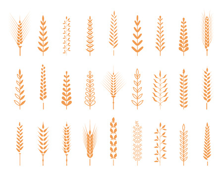 Agricultural symbols isolated on white background.