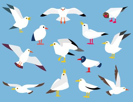 L'oiseau de mer atlantique de dessin animé. Banque d'images - 84412479