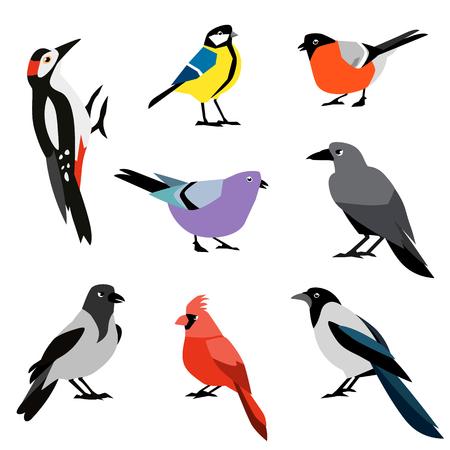 Conjunto de pássaros de inverno. Conjunto de ícones de aves de vector design plano.