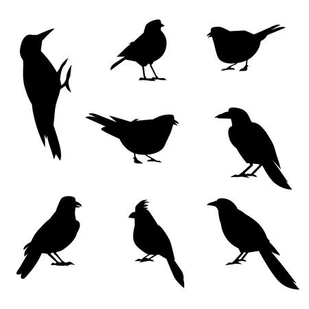 Een reeks silhouetten van wintervogels. Winter vogel in een vlakke stijl. Bos dier.