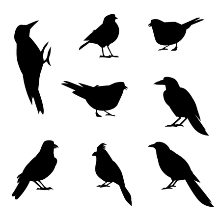 A set of silhouettes of winter birds. Winter bird in a flat style. Forest animal.
