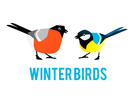 Winter birds are tit and bullfinch. Characters in a flat style. Illustration