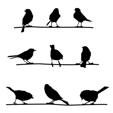 Birds on branches. Feathered on the wire. Illustration