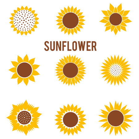 Silhouettes of yellow flowers in a flat style. Beautiful sunflower icons isolated on white background.