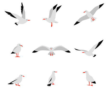 Seabirds. Set of beautiful seagulls in a flat style isolated on white background.