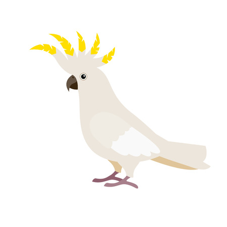 Cartoon cute parrot. Gray crested tropical cockatoo isolated on white. Illustration