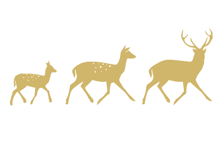 Deer collection - vector silhouette. Vector illustration isolated on white background. 일러스트
