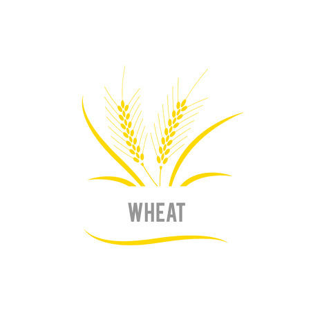 Wheat seed food cereal brew. Agriculture wheat Logo Template vector icon design.