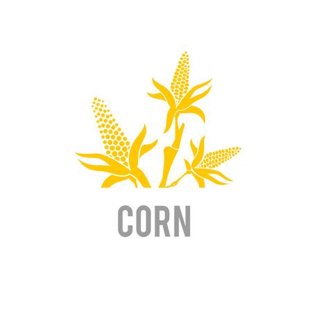 Corn icon. Vector illustration isolated on white background. Vektorové ilustrace