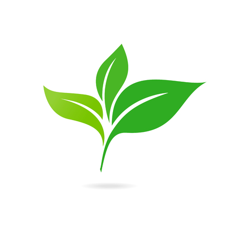 Green Leaf Icon Vector Illustrations. Ecology icon. Eco-icon. Иллюстрация