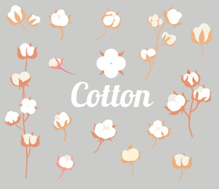 Cotton plant flower in a flat style isolated on white background. Cotton logos, icons.